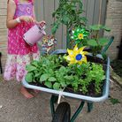 A child's garden can be child's play.