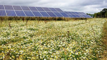 Controversy surrounds the latest solar panel proposals