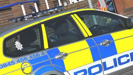 A councillor was told that extra officers were not available before the police's agreement with the