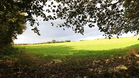 The field opposite the Old Bell pub in Harpenden