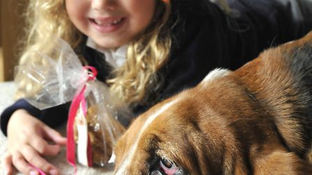 Anya Solomon-James (6) with her dog Henry, and the dog biscuits they have made, at home, in St Ives.
