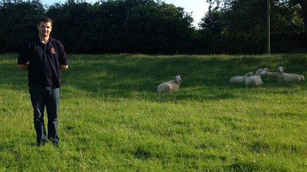 Rob Hodgkins has urged dog owners to keep their pets under control after his lamb was mauled to deat