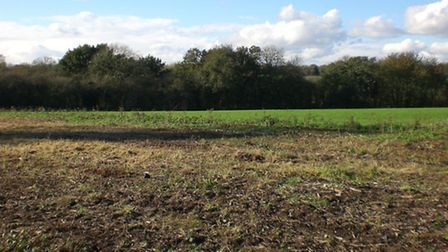 Land off Old Orchard after it was cleared