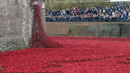 People look at the almost complete ceramic poppy art installation by artist Paul Cummins entitled 'B