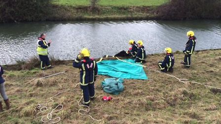 A horse was rescued from a river at Earith. Picture: Cambs Fire
