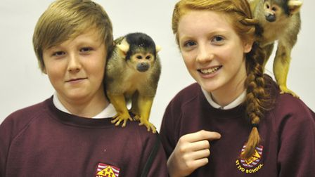 St Ivo School, have a visit from Amazing Animals, of Chipping Norton. Year 9 pupils (l-r) Jordan and