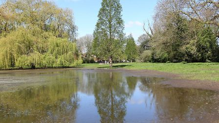 The Bell Meadow area of Verulamium Park is still flooded