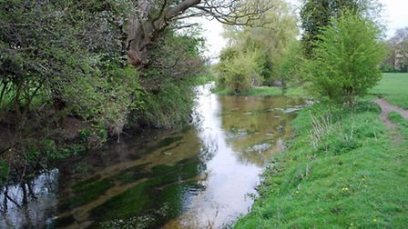 The River Ver at Sopwell. Photo courtesy of Jacqui Banfield-Taylor
