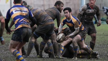 The St Albans scrum half looks for a pass