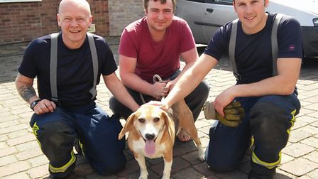 Rolo the Beagle with (from left) firefighter Adrian Strowger, owner Mr Wright and firefighter John W