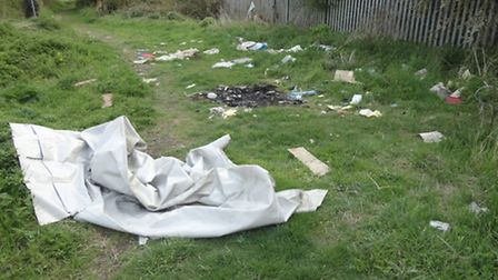 The wood where youngsters ride their bikes is strewn with rubbish.