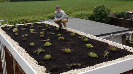 Rowan Byrne, with his roof top garden, at Greenfields, St Ives.