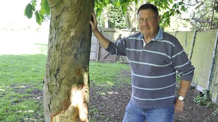 Keith Goodman, with the deliberately damaged trees at French's Field in Huntingdon.