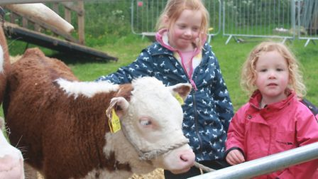 Sisters five year old Fern and Megan Dodson, just two, making friends in the livestock area. Picture