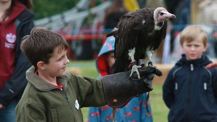 Children had fun with the hooded vulture from Ray Aliker's collection of birds of prey. Picture: Cli