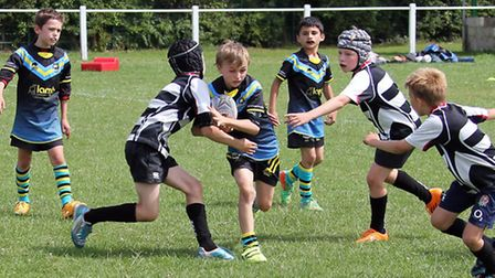 Action from St Albans Centurions' U9 tournament. Picture: Darryl Brown