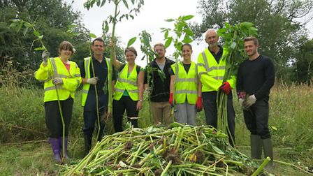 Himalayan Balsam volunteers, from left: Megan Bebb, Steven Horton, Anna Jarmolinska, David Johnson,