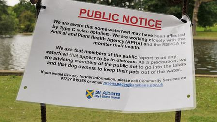 A notice from St Albans council regarding the problems for wildfowl at Verulamium lake