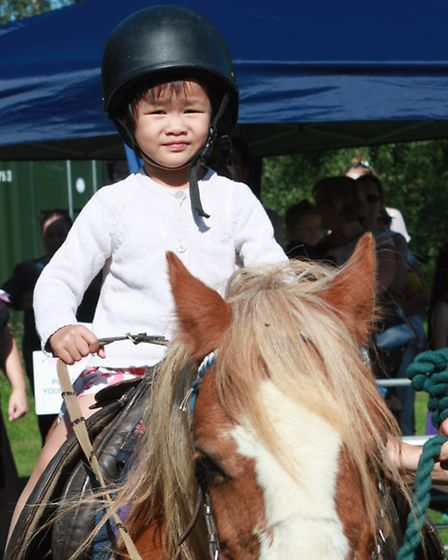 Flame, the pony, captured 2 year old Phillipa Yang's heart.