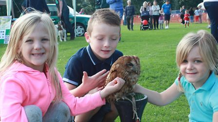 Demi and Lexi Thomas, and Ronnie Ring get up close with Marmalade, the Tawny Owl. PICTURE: Clive Por