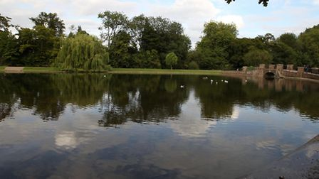 Verulamium park in St Albans- what are the solutions?