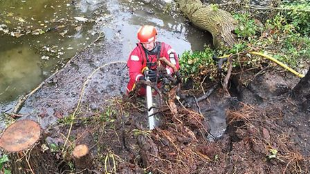 Firefighters used specialist equipment to tackle a tree stump fire.