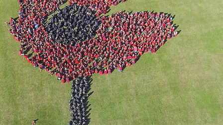 An arial shot of the human poppy. PICTURE: Aerial Images UK .