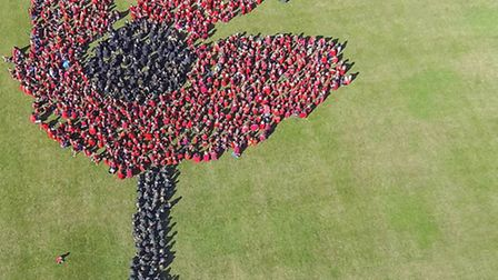 An arial shot of the human poppy made by children from schools across Royston and district. PICTURE: