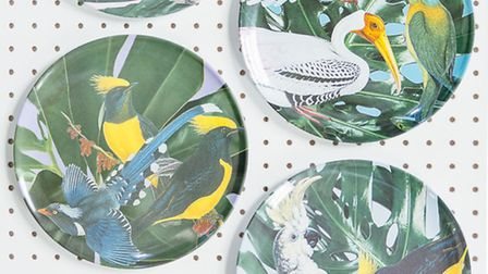 Jungle Plates, £6.50, available from Rose & Grey.