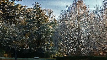 The stunning grounds of Napsbury Park (Photo: JacquiLewis)