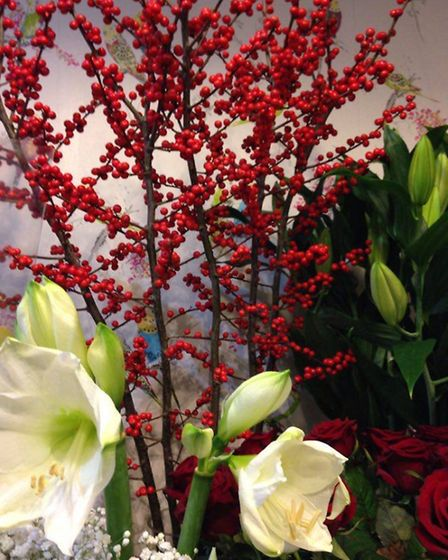 Ilex berries, lillies, red roses, amaryllis and babies breath are all in season right now