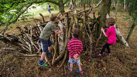 A new poll released by a St Albans charity shows partents' concerns over children's lack of wildlife