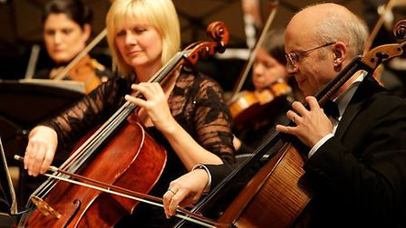 University of Hertfordshire Philharmonic Orchestra - Photography by Pete Stevens