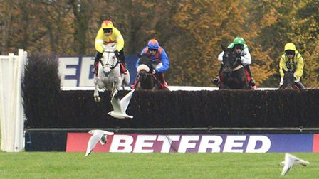 Al Ferof leads on his way to victory in the Peterborough Chase at Huntingdon Racecourse last month.