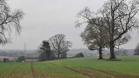Green belt land around Redbourn