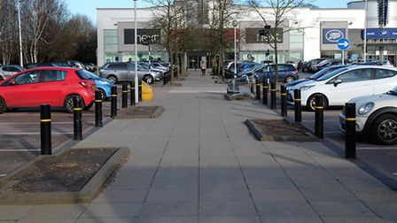 Lines of tree stumps which were chopped down in the Colney Fields shopping car park
