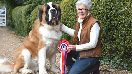 Ruth Gibson's St Bernard pup has made it through to Cruffs, at their home in Sawtry,