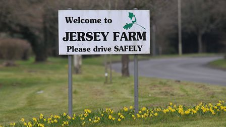 Welcome to Jersey Farm