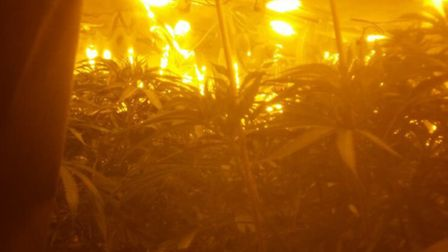 One of the bedrooms photographed during a drug raid in St Albans