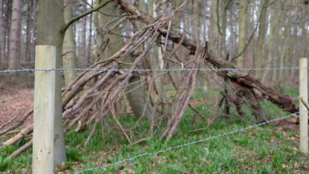 A den built by children lies just the other side of a new barbed wire fence which has been erected t