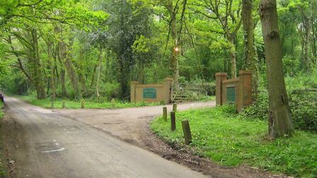 Markyate is close to areas of pretty woodland