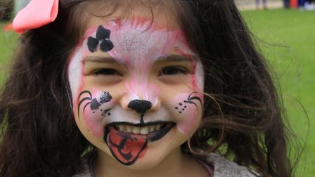Three-year-old Alice Perkins from Royston in Carnival Mood. PICTURE: Clive Porter.