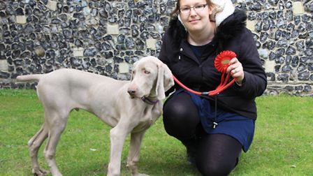 Webster was awarded the Novelty Dog Show's most handsome pooch, here he is pictured with his handler