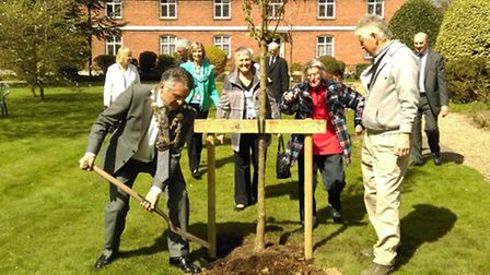 Cherry trees were ceremonially planted by the Mayor of St Albans, Cllr Salih Gaygasuz in the gardens