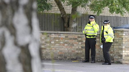 Police are hunting a gang of masked robbers who raided a Harpenden home