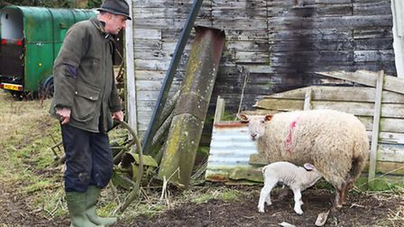 Harpenden farmer Will Dickinson with a sheep and a lamb