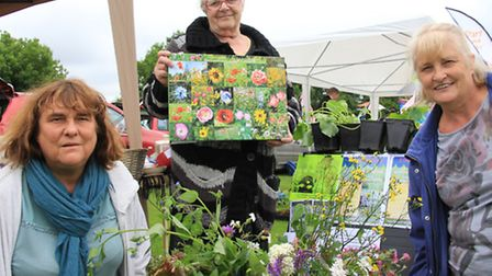 The Chain of Wild Flower Group, Claire Crossman, Yvonne Chamberlain, and Liz Williams, promoting the