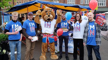 Campaigners for 'I'm In' in St Albans