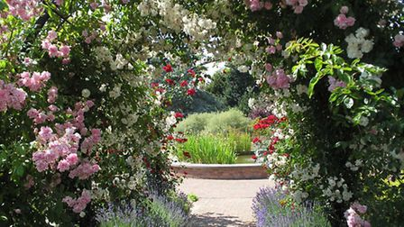 Gardens of the Rose in St Albans
