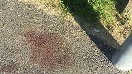 Blood from one of the victims on the road, following the double stabbing in St Albans' Oysterfields